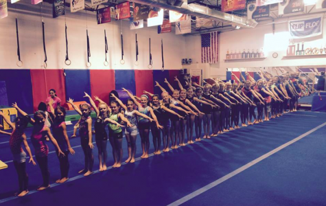 Fitness and Fun at Flip-Flop Gymnastics