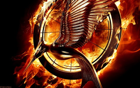 Catching Fire Catches the Eyes of Many