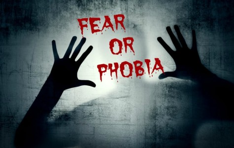 Fear Or Phobia