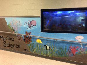 Class Spotlight: Marine Science
