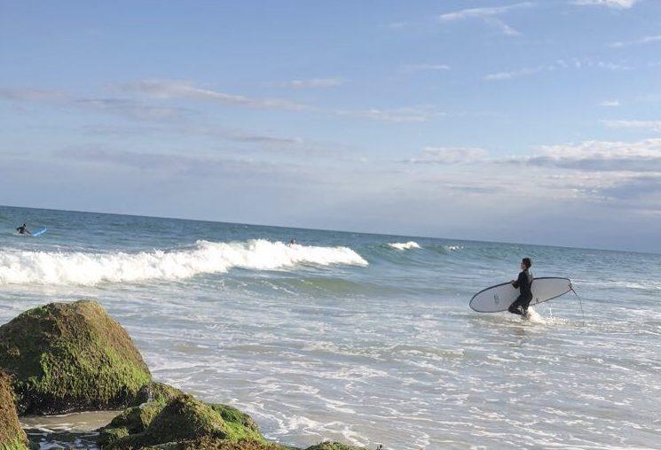 Summer Swells, Winter Waves