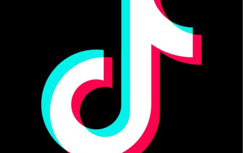 Want to Become TikTok Famous? Read this.